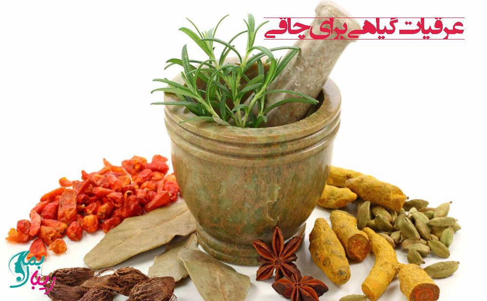 عرقیات گیاهی برای چاقی