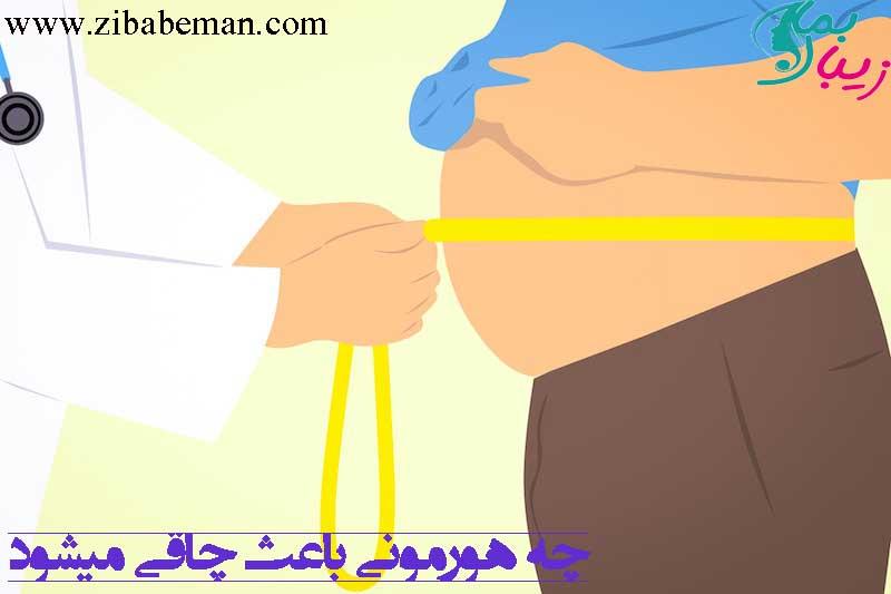 چه هورمونی باعث چاقی میشود