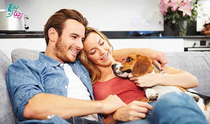 نگهداری حیوانات خانگی قبل از ازدواج