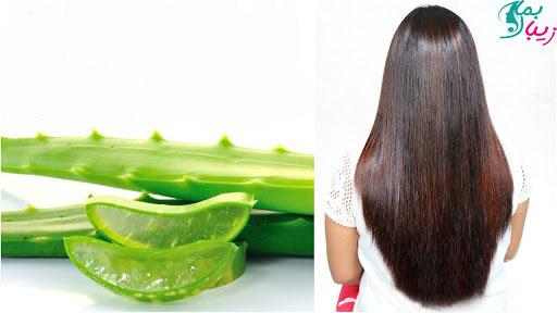 ماسک آلوئه ورا برای مو | تقویت و رشد موها