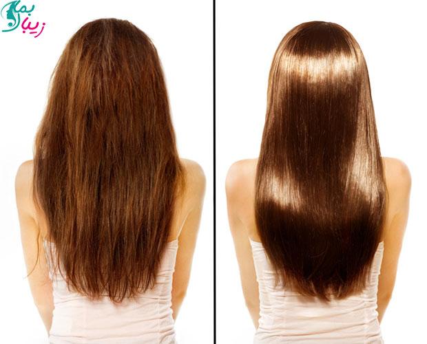ماسک روغن کرچک برای مو | سلامت مو و رشد موها