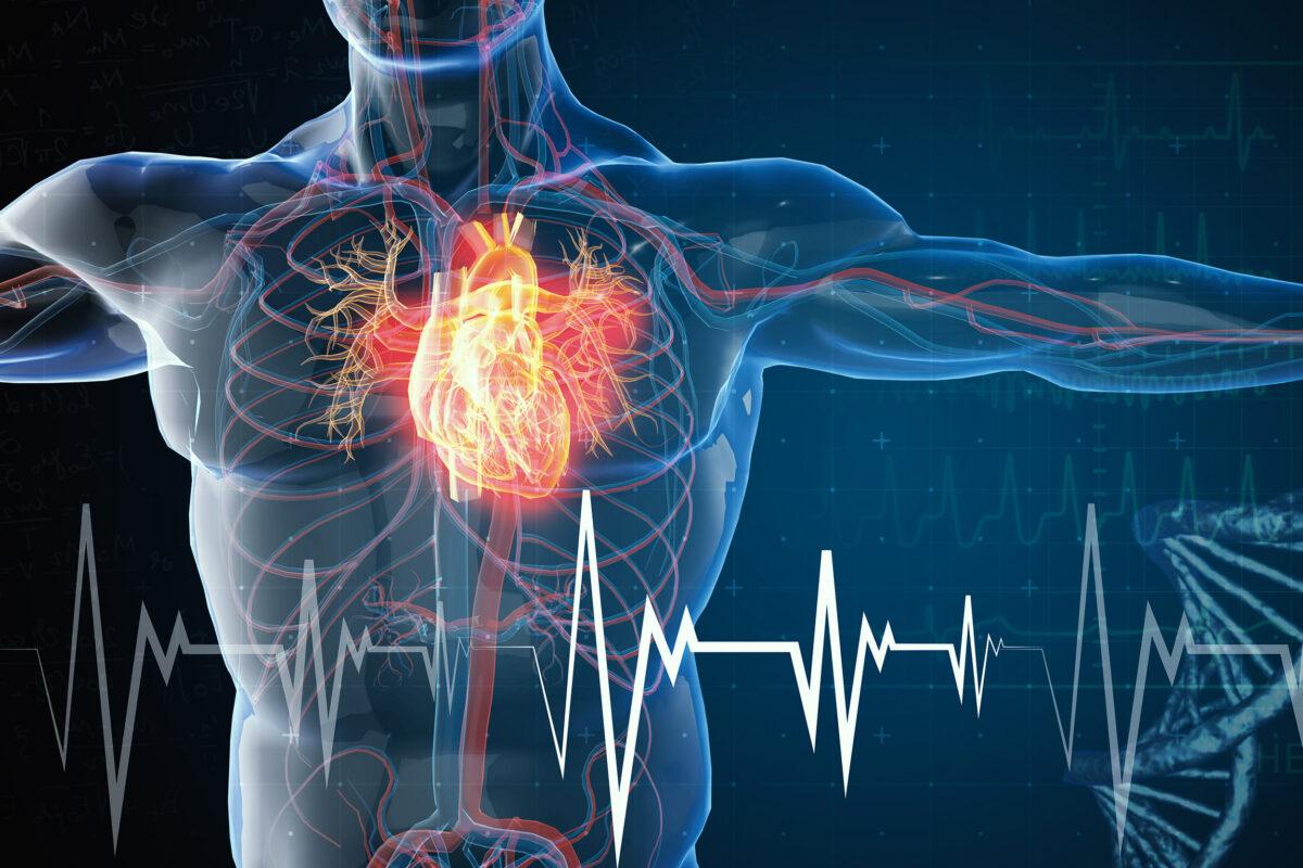 چرا سکته قلبی رخ می دهد