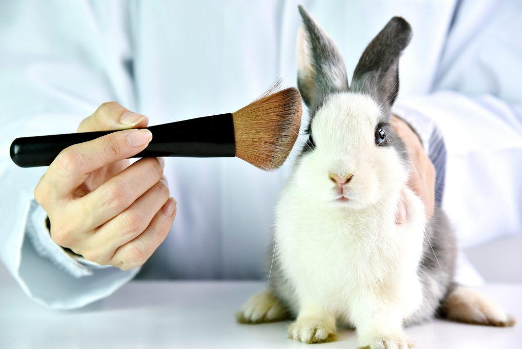 تست جیوانی محصولات آرایشی