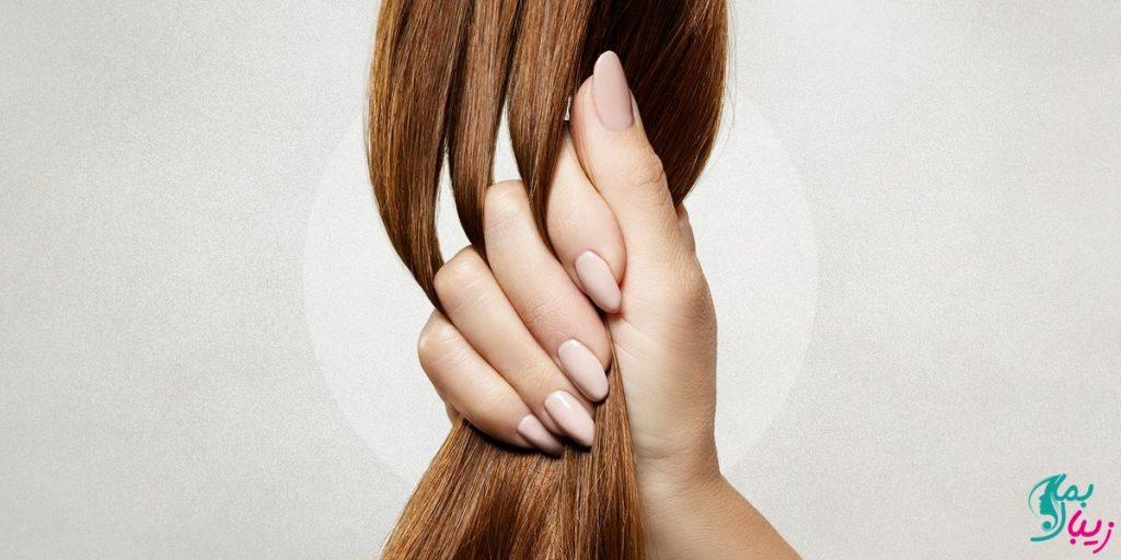 خواص سدر برای مو و پوست سر